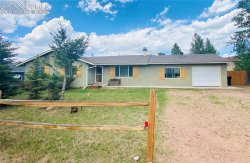 Photo of 704 N Park Drive, Woodland Park, CO 80863 (MLS # 6289278)