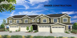 Photo of 831 Marine Corps Drive, Monument, CO 80132 (MLS # 6326999)