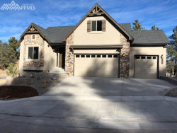 Photo of 2098 Safe Harbor Court, Colorado Springs, CO 80919 (MLS # 6411950)