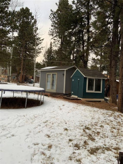 Tiny photo for 1112 W Browning Avenue, Woodland Park, CO 80863 (MLS # 6578695)
