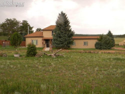 Photo of 13599 County 1 Road, Florissant, CO 80816 (MLS # 6687410)