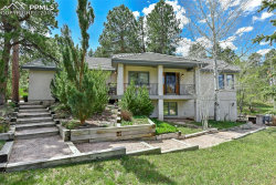Photo of 395 Cat Tail Way, Monument, CO 80132 (MLS # 6840792)