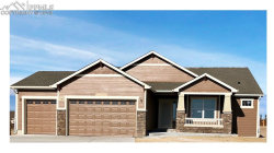 Photo of 10973 Checo Way, Peyton, CO 80831 (MLS # 7012891)