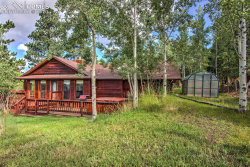 Photo of 1211 Telemark Drive, Woodland Park, CO 80863 (MLS # 7051153)