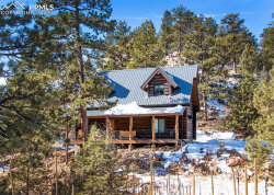 Photo of 83 Corral Circle, Florissant, CO 80816 (MLS # 7063741)
