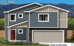 Photo of 7718 Benecia Drive, Fountain, CO 80817 (MLS # 7064283)