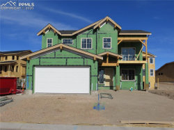 Photo of 10163 Hannaway Drive, Colorado Springs, CO 80924 (MLS # 7182523)
