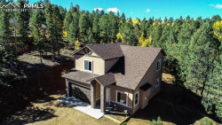 Photo of 71 Mount Elbert Drive, Divide, CO 80814 (MLS # 7286412)