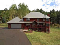 Photo of 751 Majestic Parkway, Woodland Park, CO 80863 (MLS # 7288801)