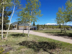 Photo of 78 Moss Rock Court, Divide, CO 80814 (MLS # 7292563)