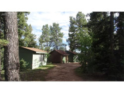 Photo of 116 John Drive, Divide, CO 80814 (MLS # 7321759)