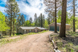 Photo of 149 Deer Ridge Trail, Florissant, CO 80816 (MLS # 7611935)