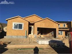 Photo of 1768 Willow Park Way, Monument, CO 80132 (MLS # 7617807)