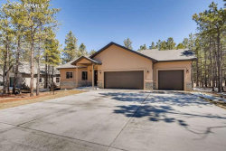 Photo of 1323 Firestone Drive, Woodland Park, CO 80863 (MLS # 7624720)