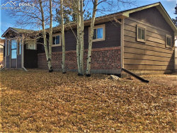 Photo of 246 Maid Marian Drive, Divide, CO 80814 (MLS # 7662377)
