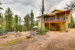 Photo of 343 Lost Lake Drive, Divide, CO 80814 (MLS # 7688225)