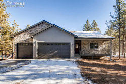 Photo of 1175 Ptarmigan Drive, Woodland Park, CO 80863 (MLS # 7739466)