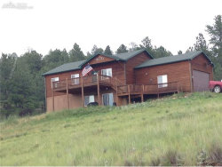 Photo of 26 Indian Head Circle, Florissant, CO 80816 (MLS # 7874222)