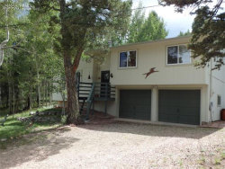 Photo of 105 Princeton Drive, Woodland Park, CO 80863 (MLS # 8085683)