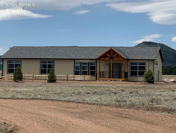 Photo of 1925 Doe Valley Road, Guffey, CO 80820 (MLS # 8148805)