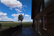 Photo of 689 County 333 Road, Lake George, CO 80827 (MLS # 8224589)