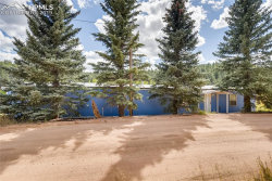 Photo of 353 Shadow Lake Drive, Divide, CO 80814 (MLS # 8351849)
