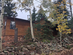 Photo of 311 Dewell Road, Woodland Park, CO 80863 (MLS # 8377360)