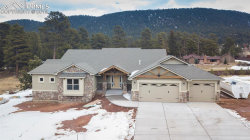Photo of 1225 Cottontail Trail, Woodland Park, CO 80863 (MLS # 8404864)