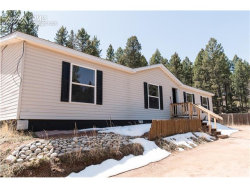 Photo of 1530 Coyote Trail, Woodland Park, CO 80863 (MLS # 8438265)