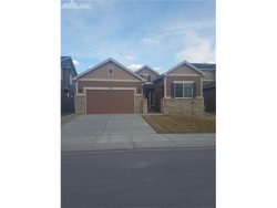 Photo of 17647 Leisure Lake Drive, Monument, CO 80132 (MLS # 8494261)
