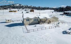 Photo of 621 High Pasture Road, Florissant, CO 80816 (MLS # 8599652)