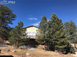 Photo of 110 Ice House Trail, Lake George, CO 80827 (MLS # 8608925)