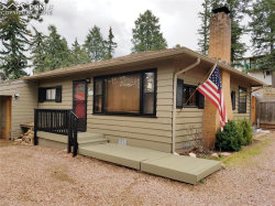Photo of 519 S Park Street, Woodland Park, CO 80863 (MLS # 8651136)