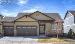 Photo of 8249 Knotty Alder Court, Colorado Springs, CO 80927 (MLS # 8670647)