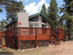 Photo of 219 Alpine View Road, Divide, CO 80814 (MLS # 8865698)
