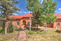 Photo of 153 Moss Rock Court, Divide, CO 80814 (MLS # 8872155)