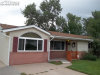 Photo of 641 Hackberry Drive, Colorado Springs, CO 80911 (MLS # 9094390)