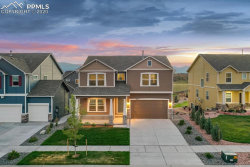 Photo of 8416 Mayfly Drive, Colorado Springs, CO 80924 (MLS # 9112074)