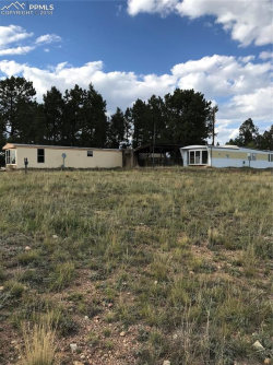 Photo of 3393 County 421 Road, Divide, CO 80814 (MLS # 9120776)