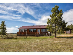 Photo of 379 High Pasture Road, Florissant, CO 80816 (MLS # 9197150)