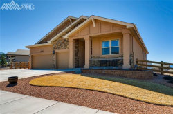 Photo of 16149 Denver Pacific Drive, Monument, CO 80132 (MLS # 9212158)