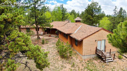 Photo of 253 Obsidian Drive, Florissant, CO 80816 (MLS # 9291975)