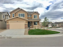 Photo of 17466 Leisure Lake Drive, Monument, CO 80132 (MLS # 9499937)