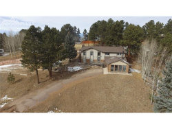 Photo of 283 Lakewood Drive, Woodland Park, CO 80863 (MLS # 9518177)