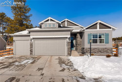 Photo of 16386 Shadow Cat Place, Monument, CO 80132 (MLS # 9564064)