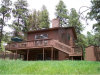 Photo of 850 Sun Valley Drive, Woodland Park, CO 80863 (MLS # 9604447)
