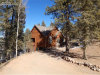 Photo of 713 Spring Valley Drive, Divide, CO 80814 (MLS # 9622960)