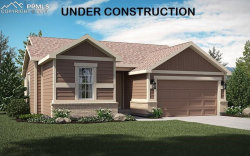 Photo of 17564 Leisure Lake Drive, Monument, CO 80132 (MLS # 9809334)