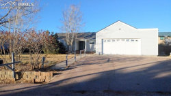 Photo of 331 Buttonwood Court, Monument, CO 80132 (MLS # 9818668)