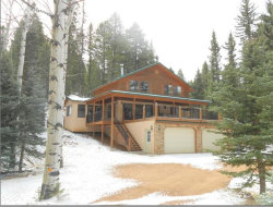 Photo of 216 W Lake Drive, Divide, CO 80814 (MLS # 9940330)